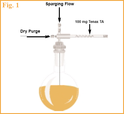 Figure 1 - Schematic of SIS Purge & Trap sampling system.