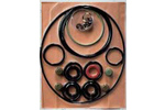 Adixen Minor Repair Kit for 205/210/215/221 SDM Pumps