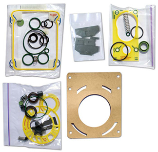 Major Repair Kit for Edwards RV3 Pump